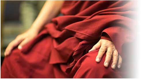 Follow the Dalai Lama Path