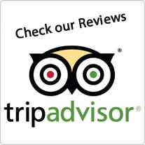 Reviews_TripAdvisor